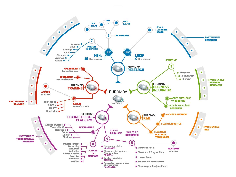 Schéma de l'organisation