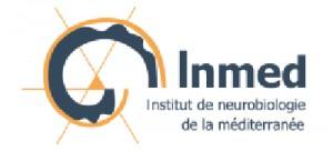 Institut de Neurobiologie de la Méditerranée