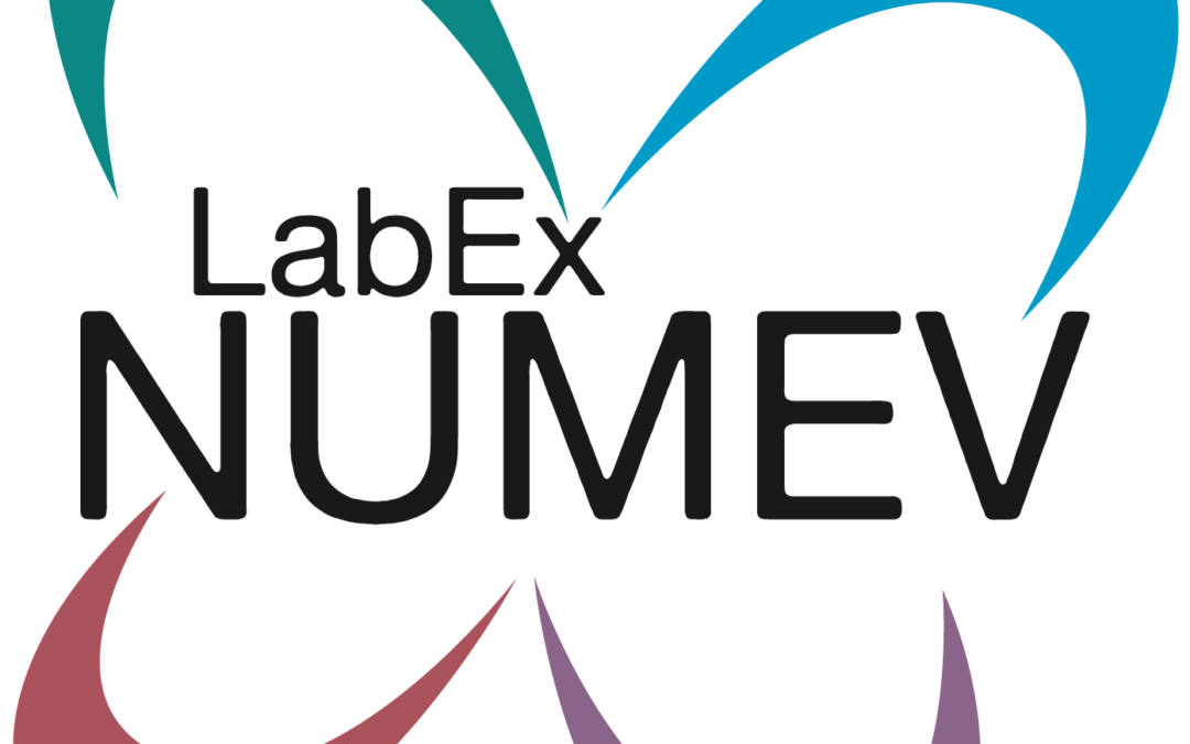 LabEx NUMEV proudly invites Marc Enrst to EuroMov seminar