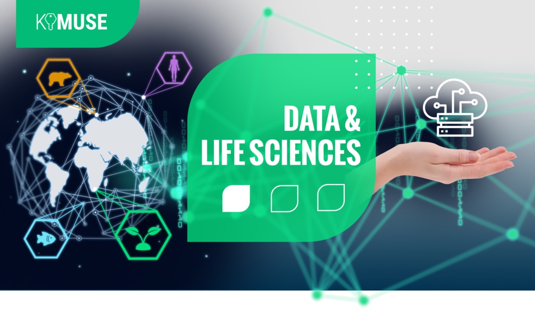 Post-doctoral fellowships from the Key Initiative MUSE Data & Life Sciences